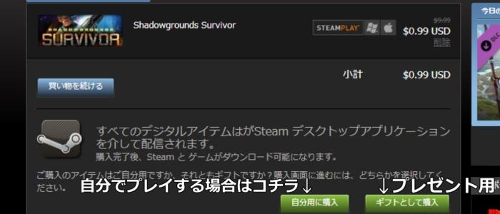 Steam 購入方法8