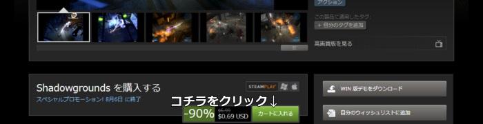 Steam 購入方法9